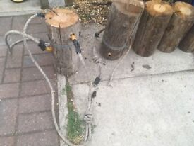 5 logs ideal for garden projects