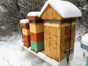 Need a space to keep bees