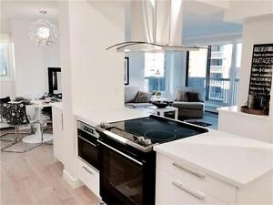 Beautiful Completely Renovated Condo