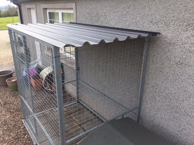 New Calvanised Metal Dog Run With Roof U0026 Wood Kennel