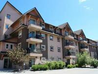 Top floor 2 bed 2 bath condo available for rent Sept 1st
