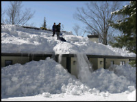Will shovel snow off roof