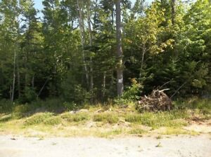 1+/- Acre Building  Site 12:  Ellershouse Landing - Hwy #1