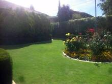 Kingsley Gardening - Perth Lawn Mowing and Gardening Services Kingsley Joondalup Area Preview
