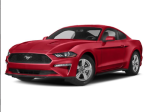 """2019 Ford Mustang EcoBoost