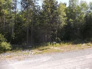 1+/- Acre Building Site 13:  Ellershouse Landing - Hwy #1