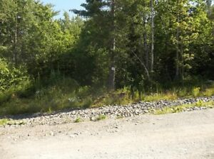 1+/- Acre Building Site 14:  Ellershouse Landing - Hwy #1