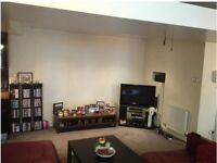A beautiful one bed fully furnished apartment