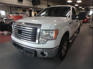 2010 Ford F-150 XLT 4WD! Local Truck! Accident Free!