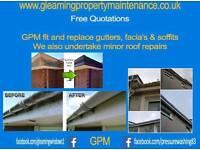 Roof roofline & gutters