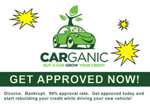 Need a car loan?  You're approved!