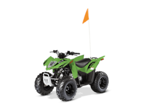 2017 ARCTIC CAT ALTERRA 90 or DVX 90