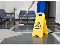 COMMERCIAL AND DOMESTIC CLEANING BUSINESS REF 147073