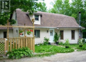 Cottage Weekly Rental!! AMAZING PRICE!
