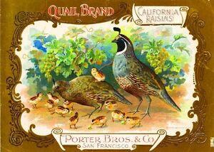 San-Francisco-Quail-Raisin-Grape-Wine-Fruit-Crate-Label-Art-Print-Vintage-Poster