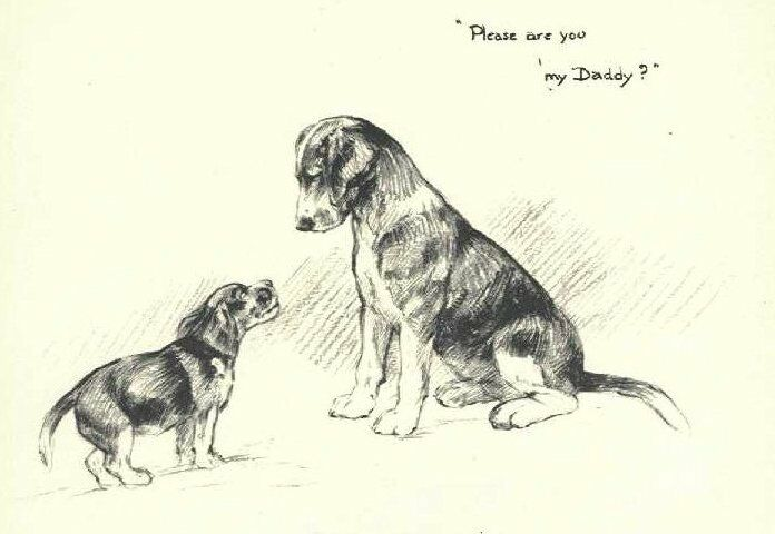 Beagle with Pup - Vintage Dog Print - 1948 KF Barker