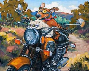 FUNNY DOG POSTER puppy cat riding BMW motorcycle cruising humor 20x16 art print