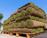 GRASS - TURF - Decorative Rock-Bark Mulches- SOD INSTALATIONS