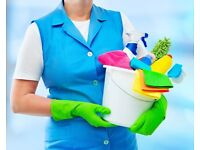 reliable cleaner looking for permanent customers in Stevenage