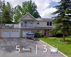 Terrific House For Rent At Queensville $3000/Mth Fully Furnished