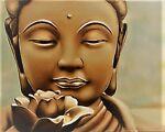 The Happy Buddha Beauty