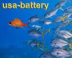usa-battery