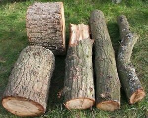 Wood for Smoker wanted