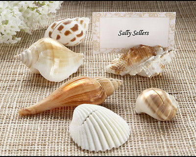 150 Shells By the Sea Authentic Seashell Beach Wedding Place Card Photo - The Place Card