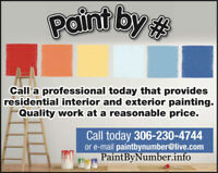 PROFESSIONAL PAINTER. Paint by Number.info