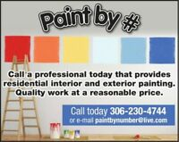 PROFESSIONAL PAINTER. PAINT BY NUMBER