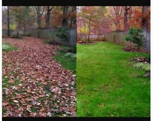 Contact John Wright's Lawn Services for LEAF REMOVAL Sarnia Sarnia Area image 6
