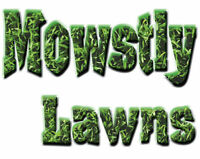 YARD CLEANUP and LAWN MAINTENANCE services
