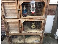 REDUCED: Three tier rabbit hutch for sale in York