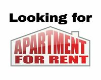 NEEDED ASAP Apartment