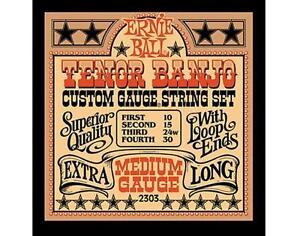 Ernie Ball 2303 Tenor Banjo Medium Stainless Steel Loop End Set