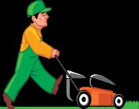 Grass Cutting at your needs