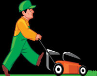 Grass cutting in Lindsay area
