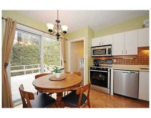 July 2-Aug 31,Merivale/Hunt Club,All incl,Furnished,Prkng,VIDEO