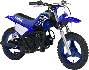 YAMAHA PW50 2018 DEMO