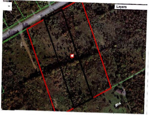 4 Acres of Land in Metcalfe for Sale!