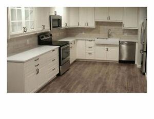 Basement Suite - Brand New - Zero Maintence