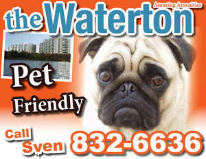Pet friendly 2 bedroom apartment at THE WATERTON