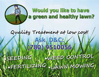 We can do Lawn Mowing, casual or contract.