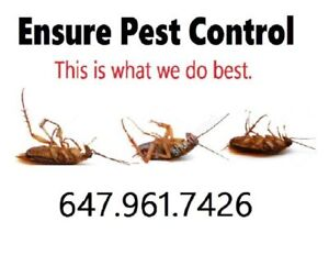 647 961 7426 (Call for Pest Control)