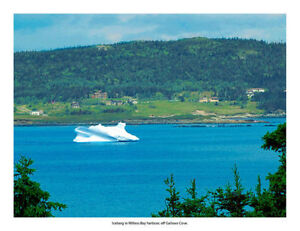 Available December-May St. John's Newfoundland image 9