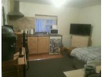 Studio flat in fishponds