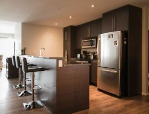 Beautiful 2 bedroom and 2 bathroom apartment with fantastic view