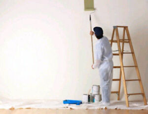 METICULOUS PROFESSIONAL PAINTER @ AFFORDABLE PRICES 289 659 6771