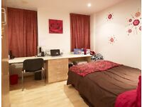 Large ensuite room available immediately. 100£ pw. Close to Leeds uni and city center