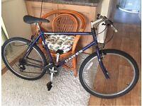 Cheap Dawes mountain bike